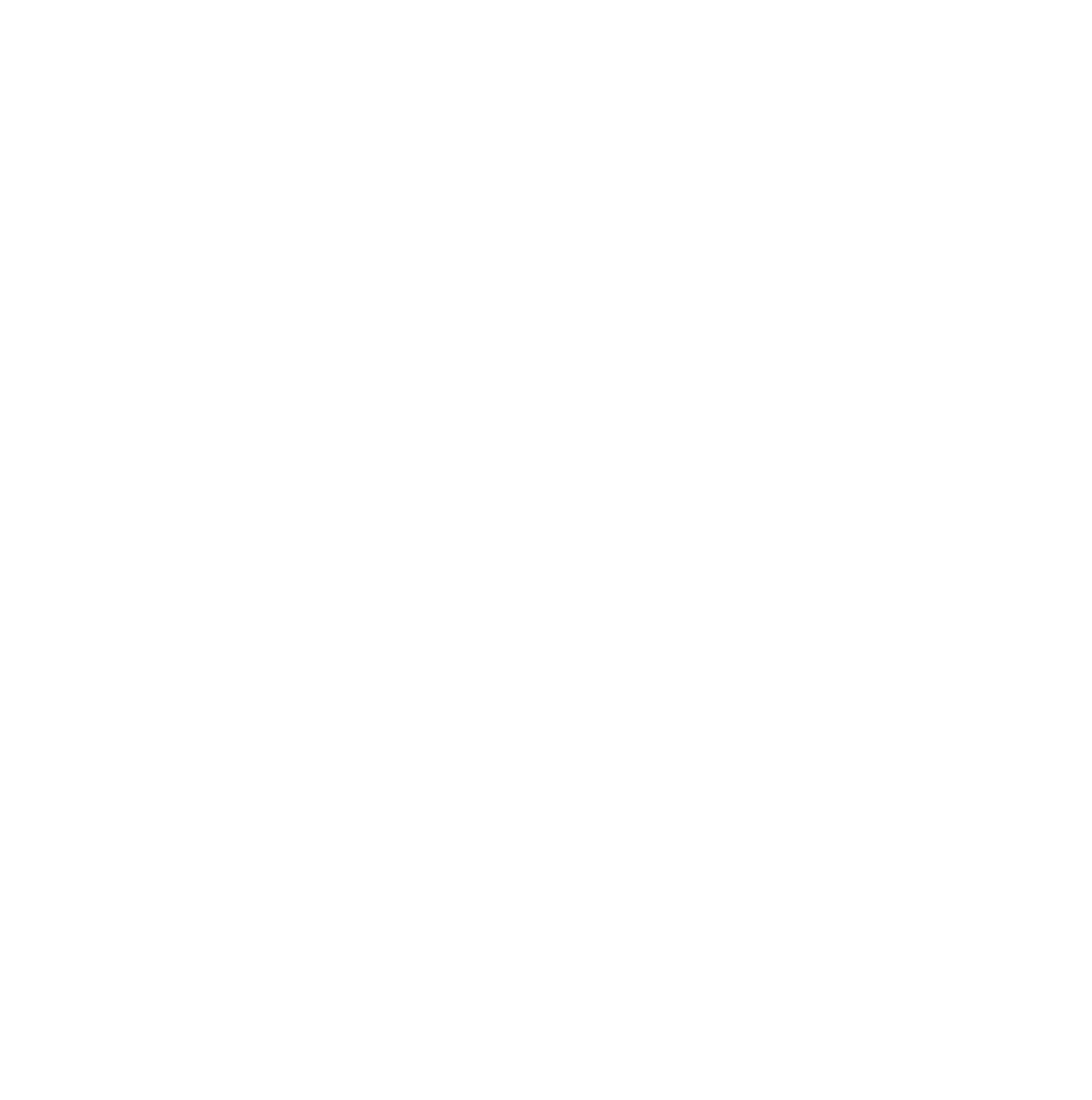 ISTNZ White Logo Transparent