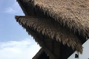 VIVA Weathered Palm 32 1